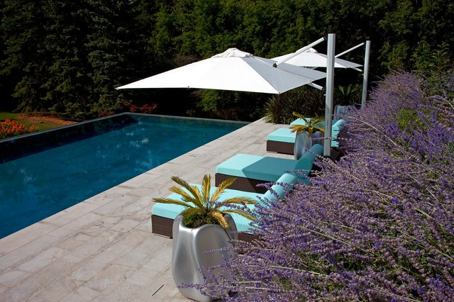 Residential home modern-pool