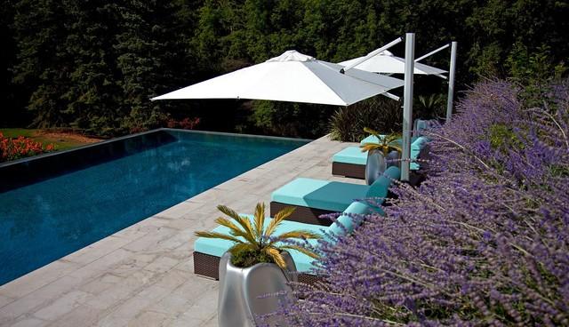 Residential home modern-pool