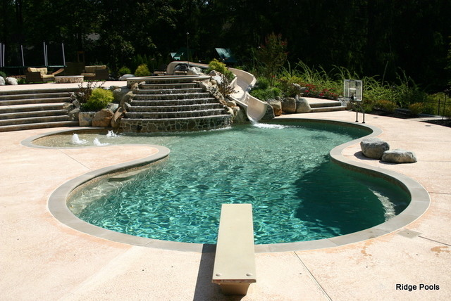 Ridge Pools Idea Book contemporary-pool