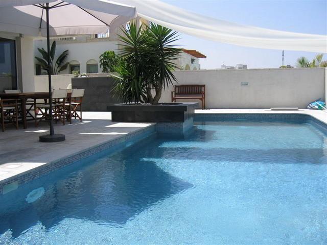 Rina Magen modern-pool