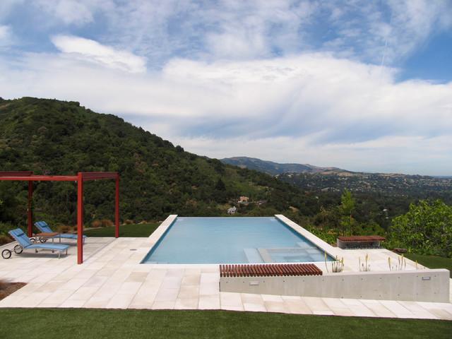 Trendy rectangular infinity pool photo in San Francisco