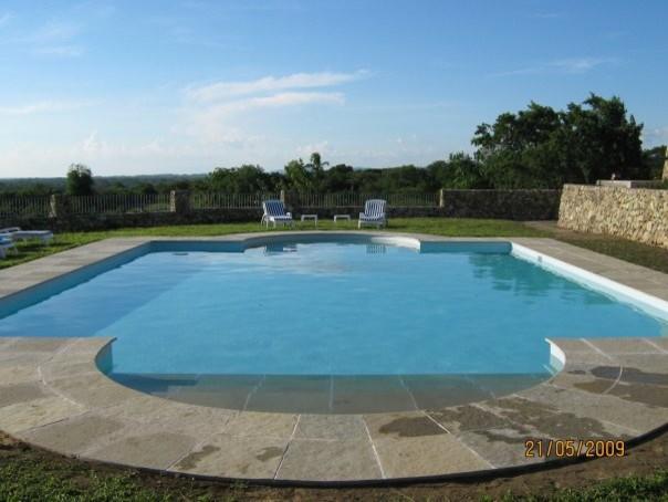 Sen. Juan Miguel Zubiri contemporary-pool