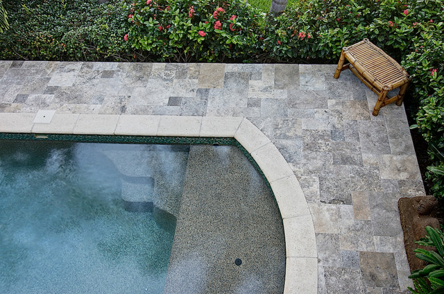 silver travertine pavers & coping - tropical - pool - tampa -