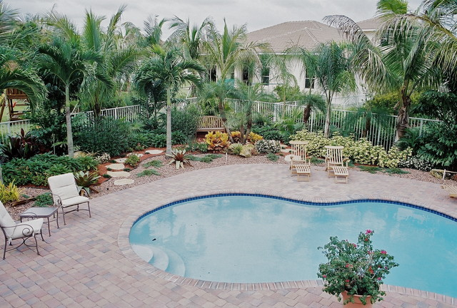 South florida landscaping tropical pool miami by for Pool designs florida