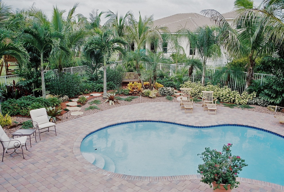 South Florida Landscaping Tropical Pool Miami By Bamboo Landscaping And Services Inc