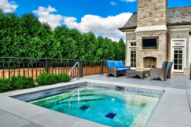 Spa park ridge il traditional pool chicago by for Pool design houzz