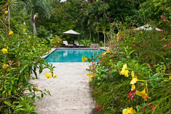 St. Thomas Villa: Pool tropical