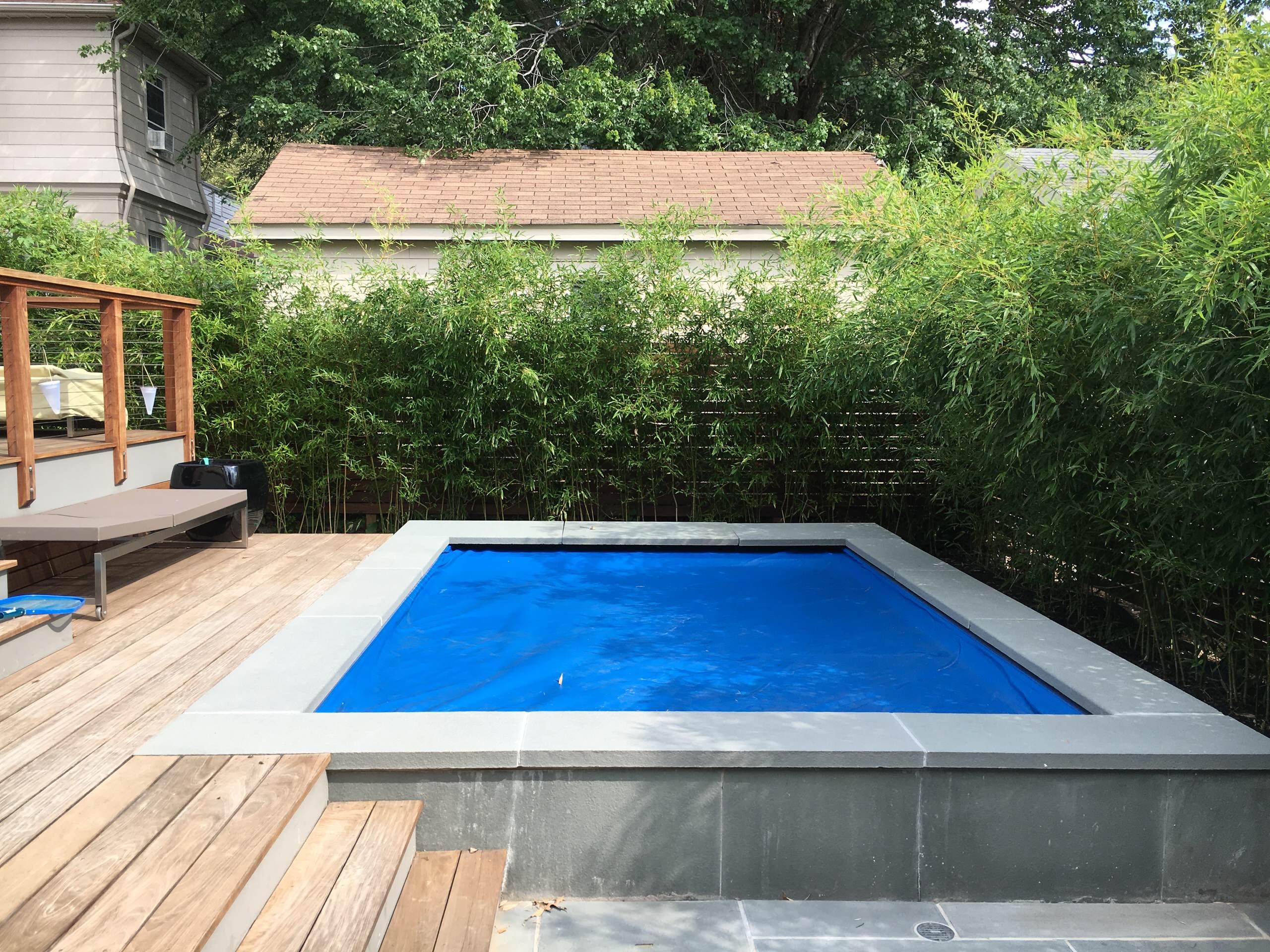 Suburban Modern with Pool