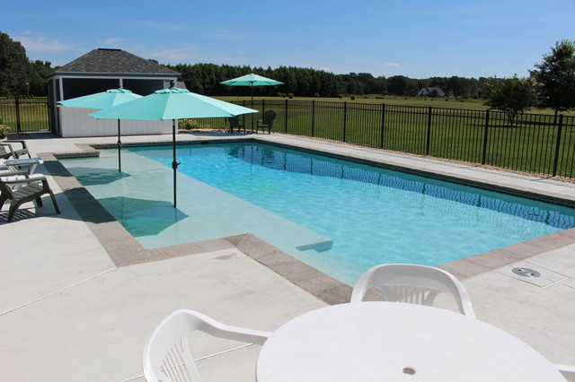 Sun Shelf Contemporary Swimming Pool Hot Tub Dc Metro By The Pool Company Construction
