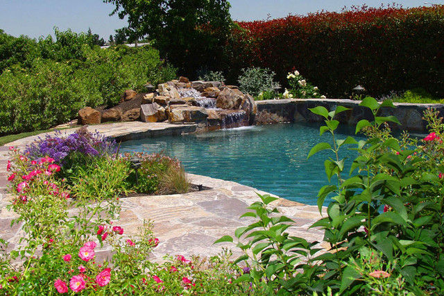 Swan Pools Swimming Pool Outdoor Living Environment Watching The River Run Traditional