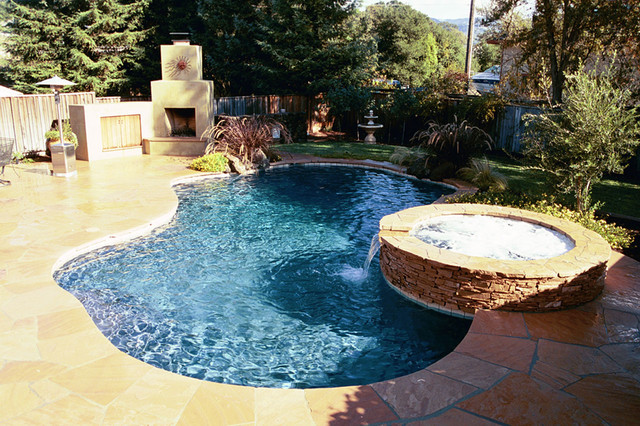 Swan pools swimming pools construction company backyard fun contemporary pool san for Swimming pool construction company