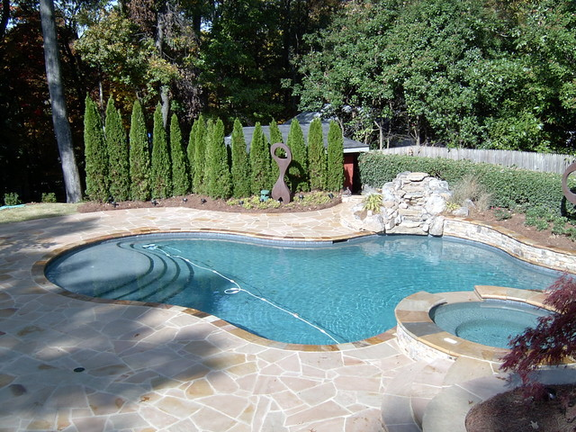 Swimming Pool Designs traditional-pool