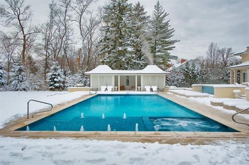 Swimming Pools Chicago: Platinum Pools