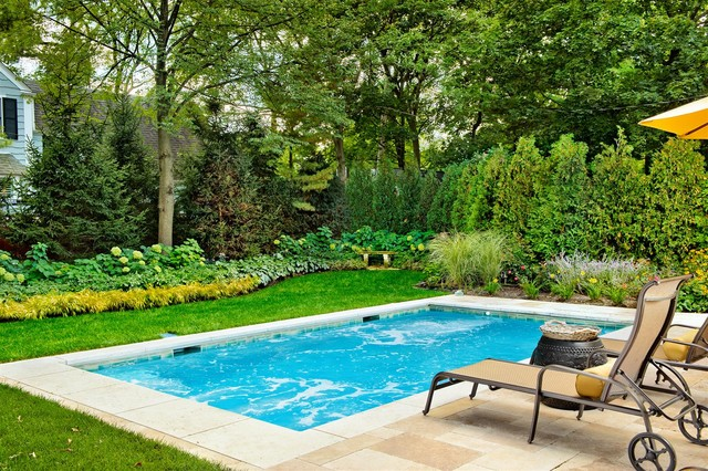 Swimming pools chicago platinum pools traditional for Pool design houzz