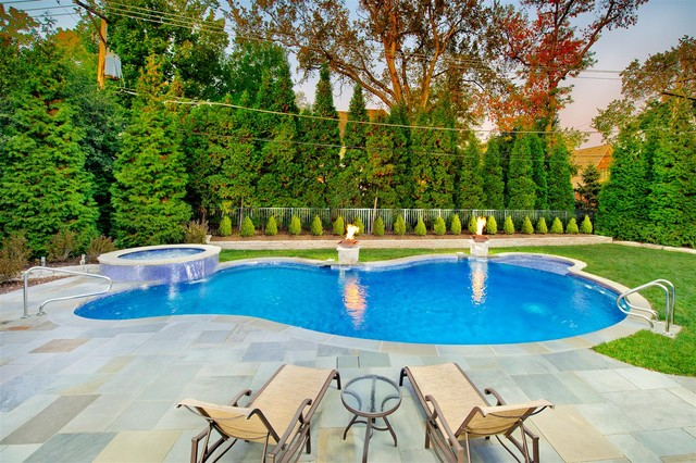 Swimming Pools Chicago: Platinum Pools traditional pool