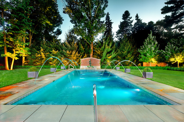 Swimming Pools Chicago: Platinum Pools traditional-pool