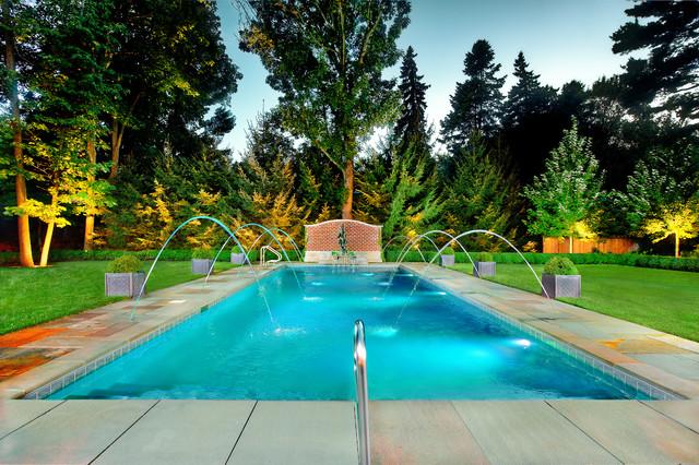 Swimming Pools Chicago: Platinum Pools traditional-pool