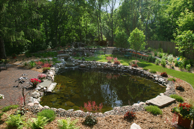Take A Dip In A Swimming Pond Traditional Pool