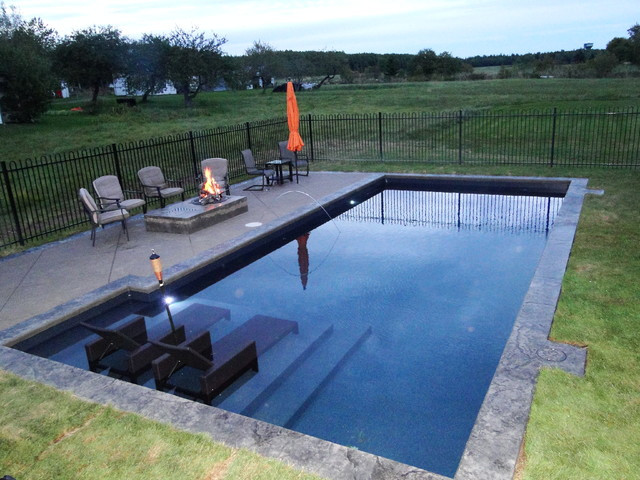 Tanning ledge project traditional pool other by for Pool design with tanning ledge