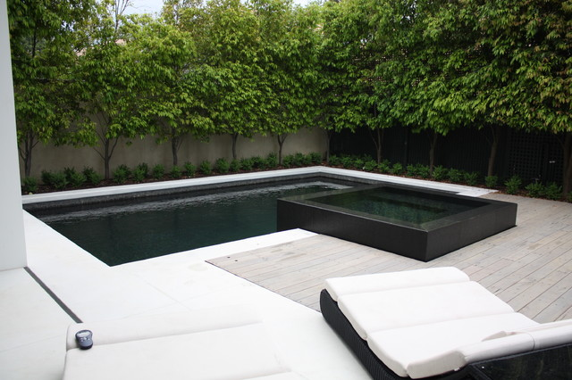 Black beauty contemporary pool