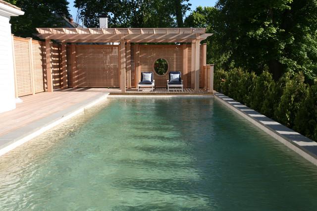 The Washington Project pool