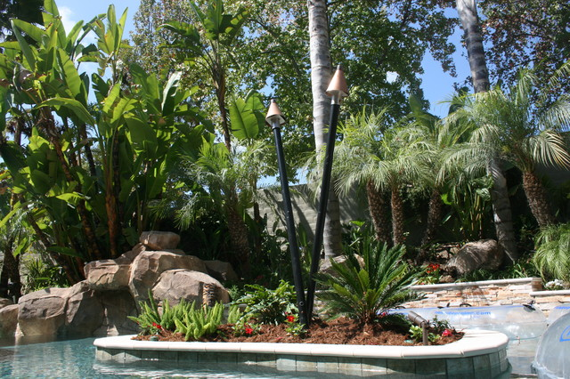 Trexel Project tropical-pool