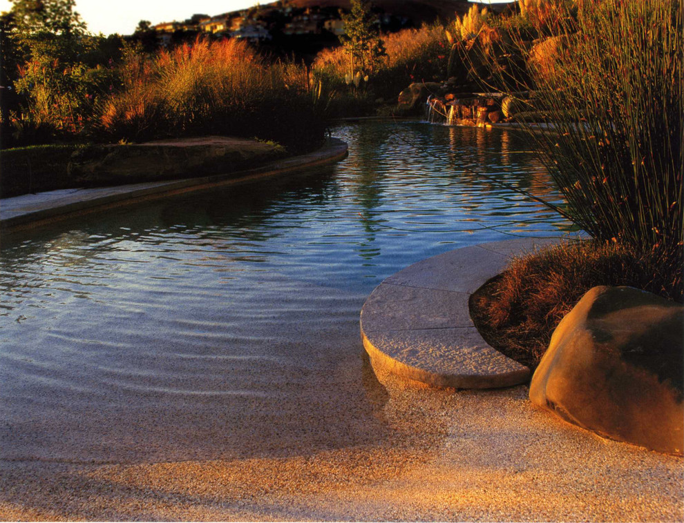 Inspiration for a tropical natural pool remodel in San Francisco