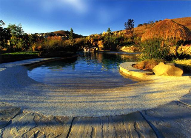 Tropical Beach Entry Pool tropical-pool
