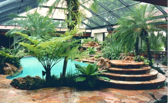 Tropical Environment In South Florida Tropical Pool