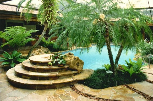 Tropical environment in south florida tropical-pool
