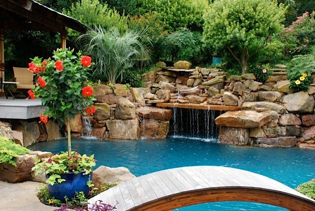 Tropical garden oasis tropical pool dallas by for Garden oases pool entrance