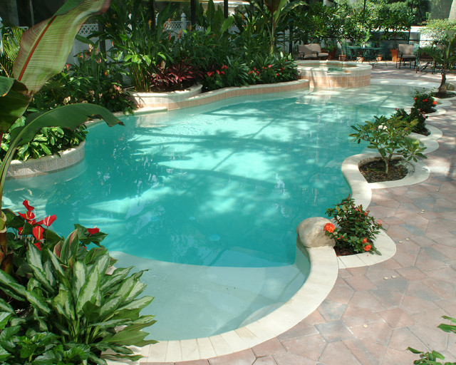 Tropical tropical pool tampa by natural springs for Pool design tampa