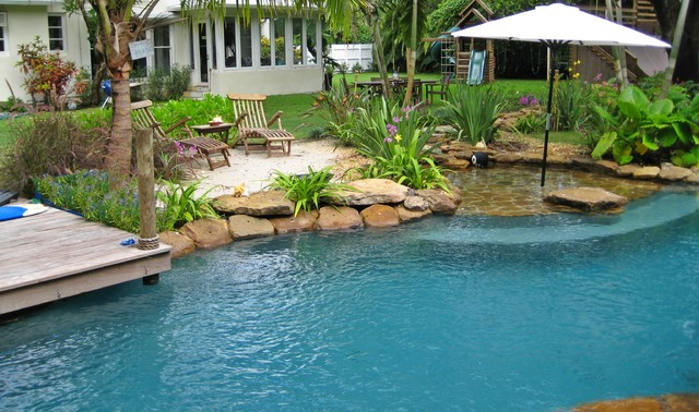 Tropical paradise in south florida tropical pool for Pool design florida