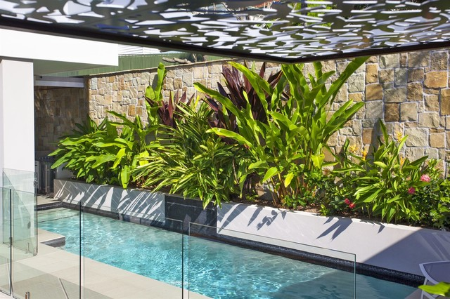 Utopia landscape design gold award for Landscape architecture courses brisbane