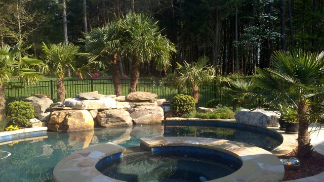 Windmills Tropical Pool Charlotte By Paradise Palms Outdoor Living