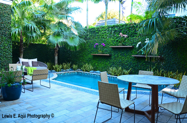 Zesty zen tropical pool miami by bell landscape for Garden pool zen area