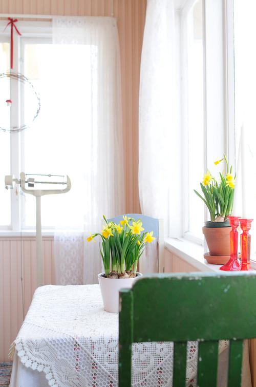 diese blumen machen lust auf fr hling huffpost deutschland. Black Bedroom Furniture Sets. Home Design Ideas