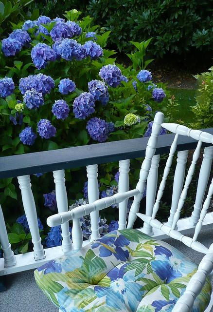 A blue garden traditional-porch