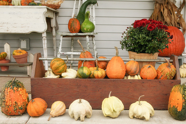 A Peek at 2 Prettily Dressed Fall Porches eclectic-porch