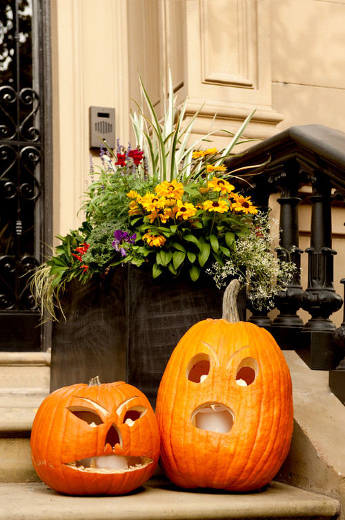 Autumn/Halloween Decor