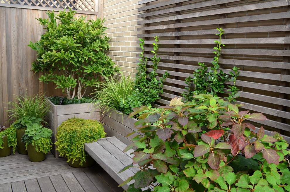 Elegant porch photo in New York with decking