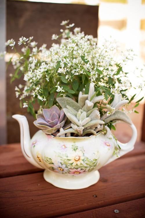 Dish Gardening Ideas