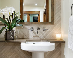 Black Swan Residence, Aspen contemporary-powder-room
