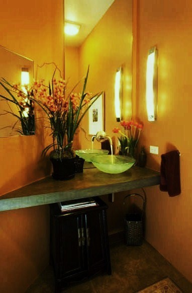 Debra Campbell Design contemporary powder room