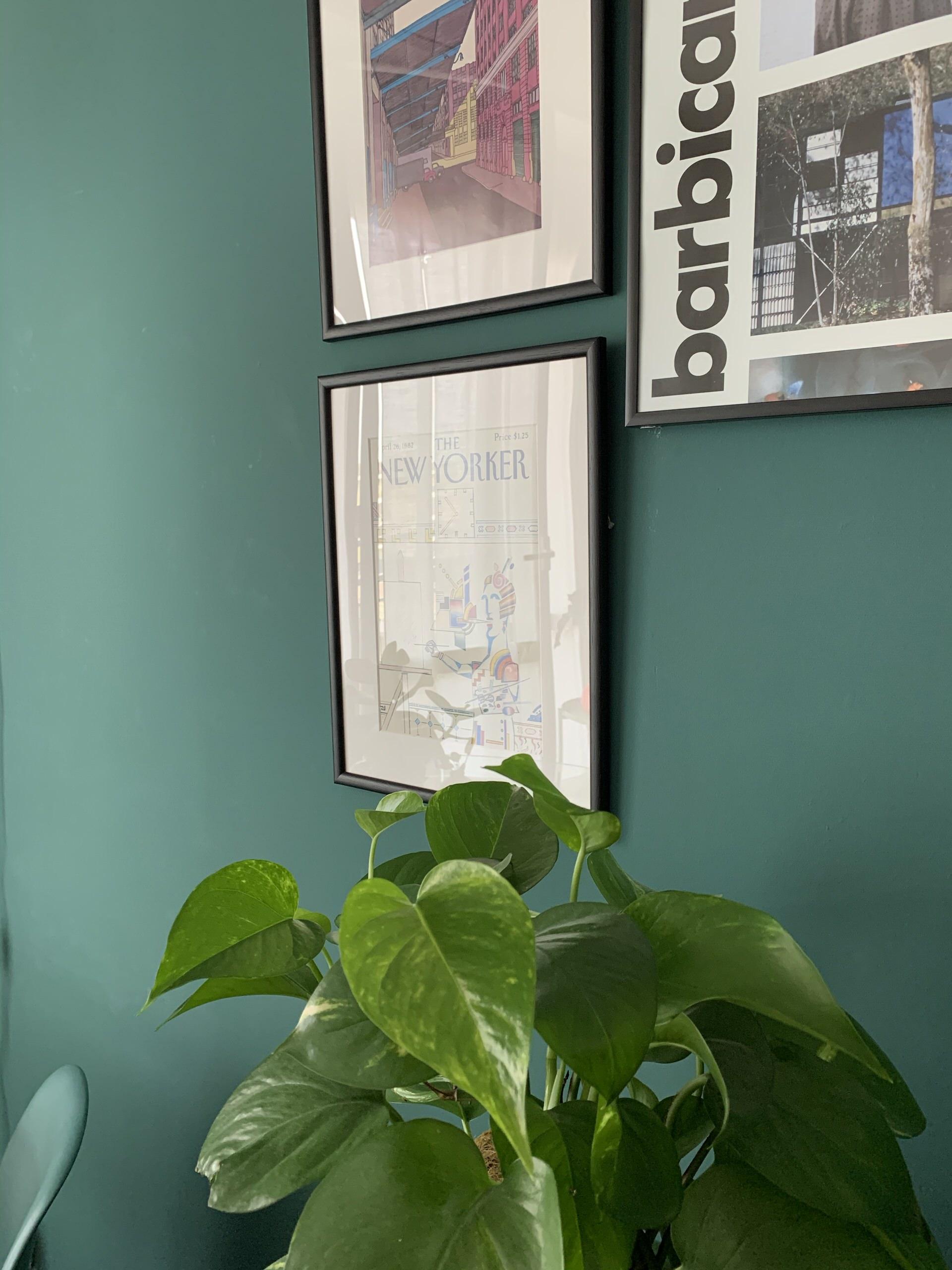 Palette di verde