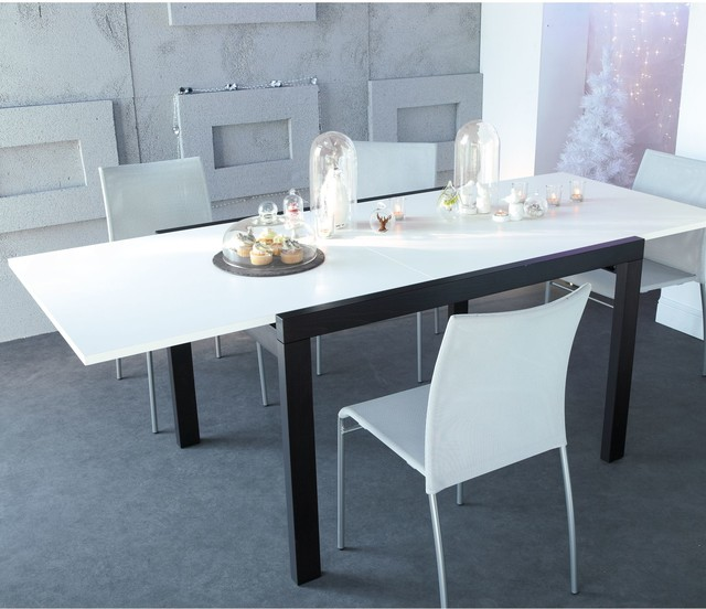 Terra sejour table rectangulaire extensible de 4 8 for Table 4 personnes extensible