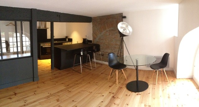 Am nagement d 39 un souplex a toulouse for Amenagement sejour moderne