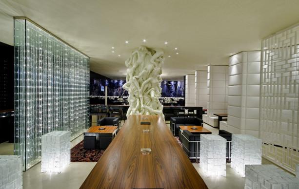 murs de s paration lumineux moderne salon grenoble. Black Bedroom Furniture Sets. Home Design Ideas