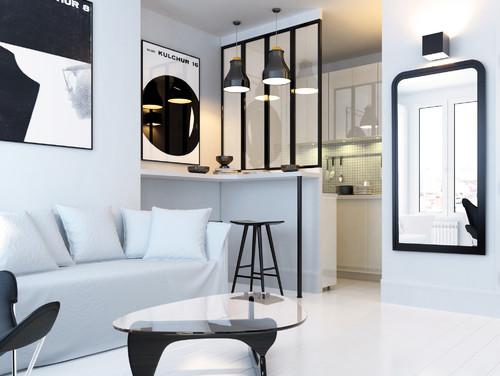 Salon lumineux contemporain noir et blanc à l'allure épurée
