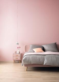 Schoner Wohnen Designfarben Dezentes Kristallrosa Modern Schlafzimmer Hamburg Von Schoner Wohnen Farbe Houzz